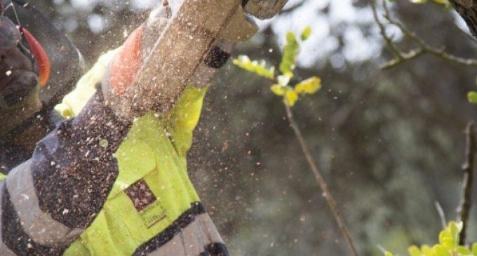 Diputació reforça la prevenció d'incendis en les zones més sensibles