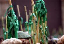 Castelló despliega un dispositivo especial para impedir una Romería de les Canyes alternativa