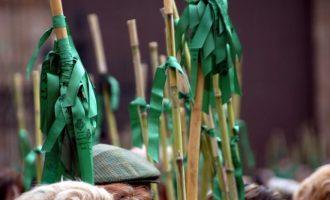 Romeria de les Canyes, la tradició del poble