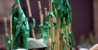 Romeria de les Canyes, la tradición del pueblo