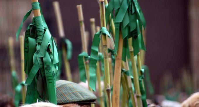 Castelló desplega un dispositiu especial per a impedir una Romeria de les Canyes alternativa