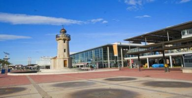 Degusta el millor arròs mariner en les V Jornades Gastronòmiques de Polp i Sèpia del Grau de Castelló