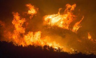 El 112 informa de un incendio forestal en Onda