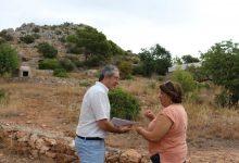 Castelló supervisa periòdicament el paratge natural de la Magdalena