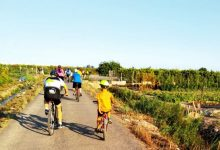 'L'Eixida amb bici' per la platja d'Almenara va acollir a més de 100 persones
