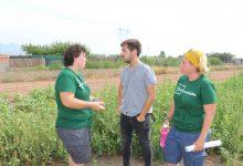 Castelló reivindica l'ecologia i la inclusió social de l'hort del Mas d'en Riera