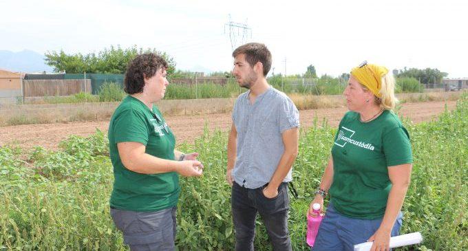 Castelló reivindica la ecología y la inclusión social del huerto del Mas d'en Riera