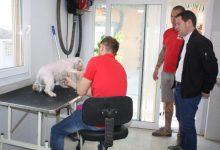 El servei municipal de rescat d'animals supera les 150 adopcions