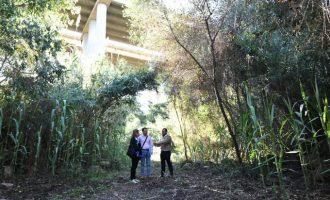 Vila-real posa en valor el Molí Paquero preservant la biodiversitat