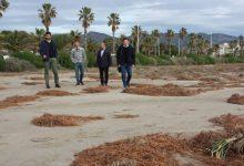 Més d'una quinzena d'operaris i diverses màquines treballen per a condicionar el litoral de Castelló abans de Pasqua