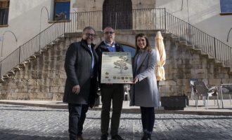 La Diputació dobla el pressupost per a conservar arbres monumentals fins als 40.000 euros