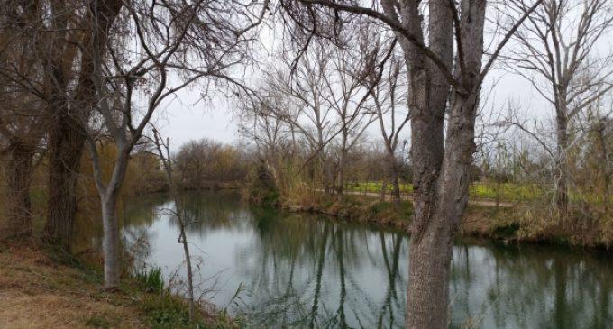 L'Ajuntament de Borriana ofereix un nou curs d'Agricultura ecològica