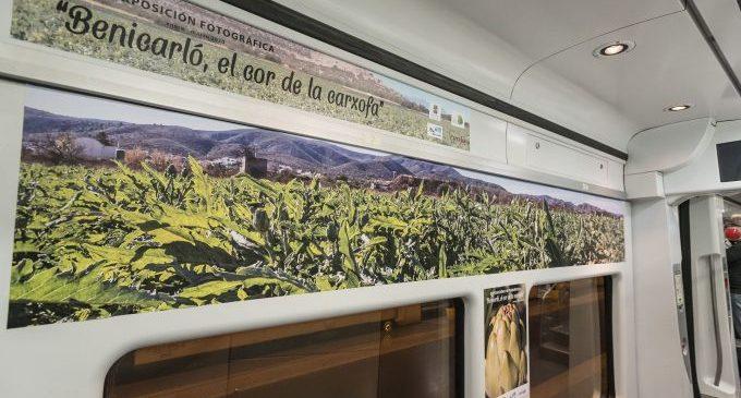 L'Ajuntament i Renfe presenten l'exposició fotogràfica 'Benicarló, el Cor de la Carxofa'