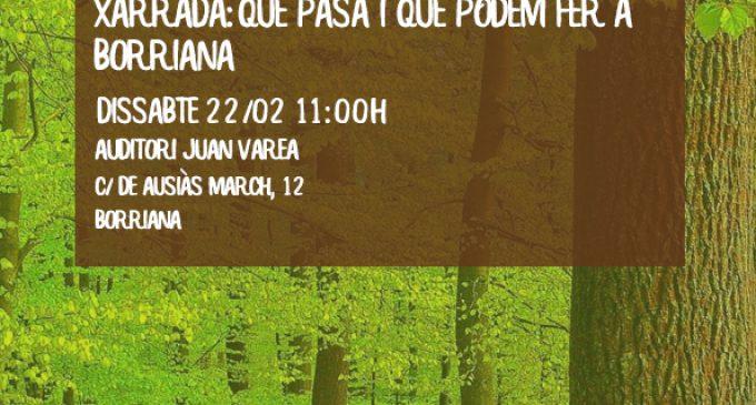 L'AEB i l'Ajuntament organitzen la primera jornada de conscienciació ambiental a Borriana