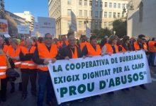 70 borrianencs reclamen a València mesures que dignifiquen la producció citrícola