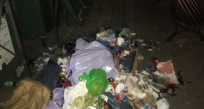 Castelló alerta del risc sanitari de deixar les bosses de fem fora del contenidor