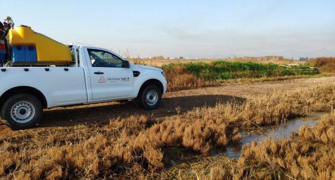 El veïnat de Nules podrà desplaçar-se a segones residències del municipi per a fer tractaments contra mosquits