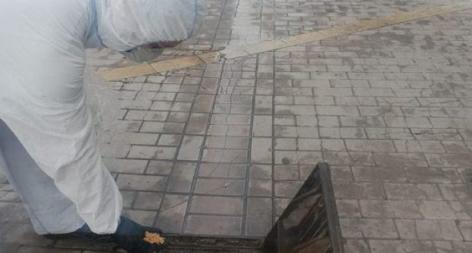 Comença la campanya contra els mosquits amb els primers tractaments a l'entorn urbà de Benicarló