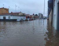 Borriana garanteix la recollida de voluminosos a les persones afectades per les inundacions