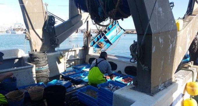 Safont celebra l'aval de la Generalitat als ERTO en el sector pesquer