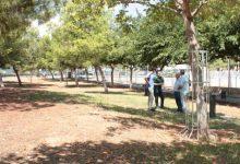 Castelló reobre els parcs canins amb mesures per a evitar el contacte