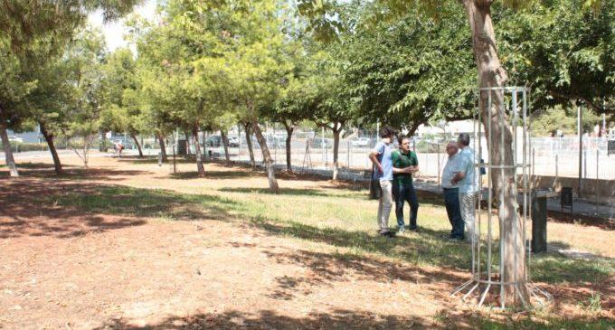 Castelló reobri els parcs canins amb mesures per a evitar el contacte