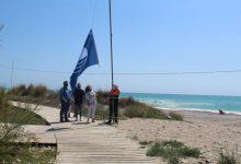 Colomer entrega les banderes Qualitur de les platges de Nules