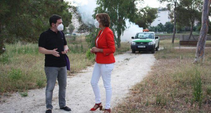 La coordinació entre Castelló i Benicàssim multiplica l'efectivitat dels tractaments antimosquits