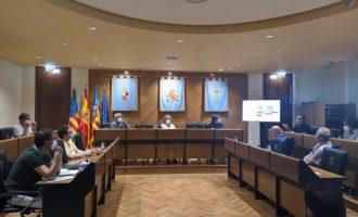 El Consell Agrari de Borriana acorda presentar una declaració institucional per a combatre la plaga del Cotonet de Sud-àfrica