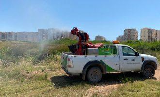 Benicàssim incrementa els treballs contra mosquits i altres plagues