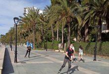El Consell perfila la reactivació social i econòmica de Castelló a partir de maig