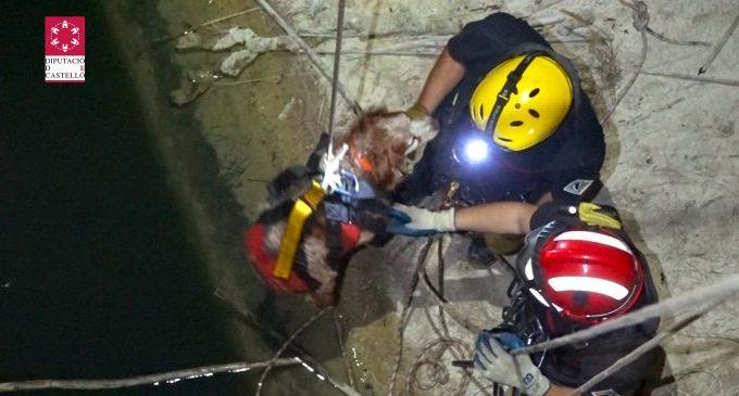 Rescatat un gos en la presa de l'embassament de l'Alcora