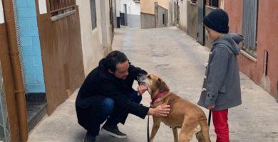 Onda renova el seu compromís pel sacrifici 0 d'animals de companyia i millora el servei d'adopció