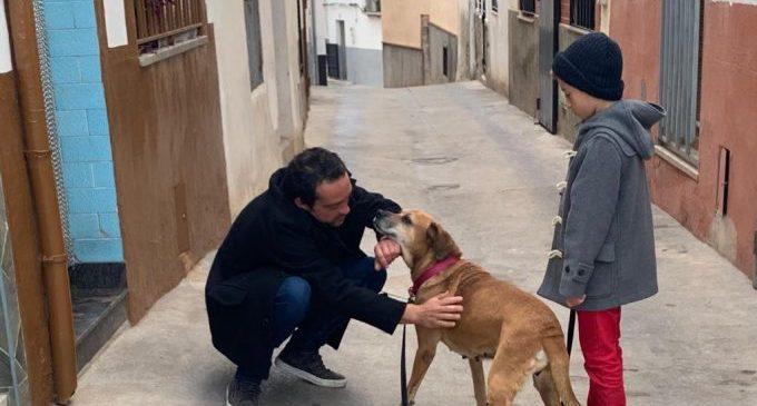 Onda renueva su compromiso por el sacrifico 0 de animales de compañía y mejora el servicio de adopción