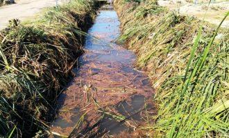 L'Ajuntament d'Almenara millora i manté les sèquies i canals de la marjal