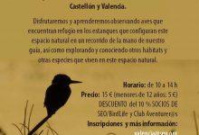 SEO Birdlife organitza un passeig en família per la marjal d'Almenara per a celebrar el dia dels ocells