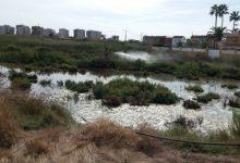 Benicàssim continúa con los tratamientos contra mosquitos en agua estancada