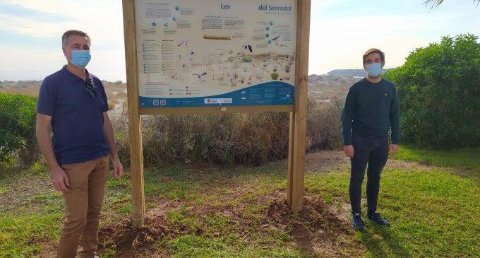 Castelló impulsa noves mesures per a protegir la reserva dunar del Serradal i implicar la ciutadania en la seua conservació