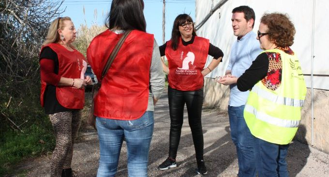 Castelló retorna el 80% dels animals rescatats a la via pública