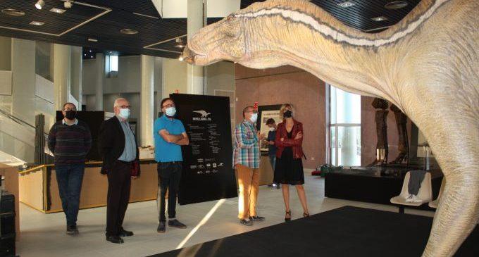 El Planetari de Castelló abre mañana la exposición sobre dinosaurios 'Morelladon&CIA'