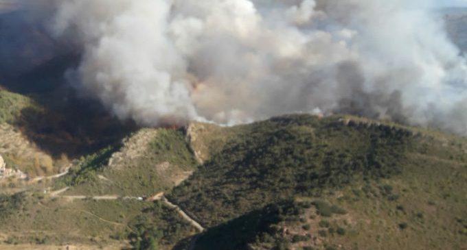 Un incendi a Begís crema una zona de muntanya pròxima a granges