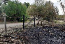 Els últims incendis al Paisatge Protegit de la Desembocadura del Millars cremen pins, canyars i una part de l'històric molí del Terraet