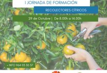 Borriana acogerá la primera jornada formativa de recolección de cítricos de la provincia