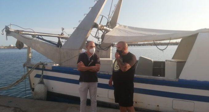 La Diputació de Castelló inclourà el peix de llotja en les campanyes de promoció de la marca Castelló Ruta de Sabor