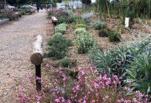 Així és el nou jardí per al veïnat d'Almassora