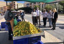 Almassora obri el IX Mercat de la Taronja en suport de l'agricultura local