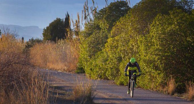Almassora regula l'ús de patinets i bicicletes elèctriques per a evitar accidents