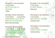 Castelló impulsa activitats mediambientals en el paratge municipal de la Magdalena