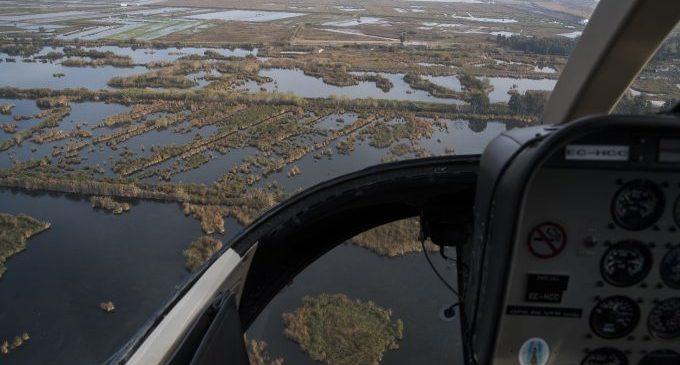La Diputación activa vuelos de fumigación en las zonas de marjal de la provincia para evitar la aparición de mosquitos