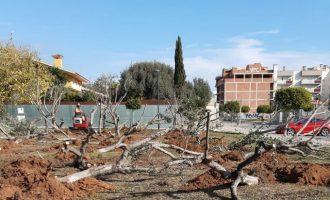 Benicarló transformarà una parcel·la de 3.000 metres quadrats en un gran parc verd